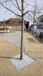 Plaza de los Molinos