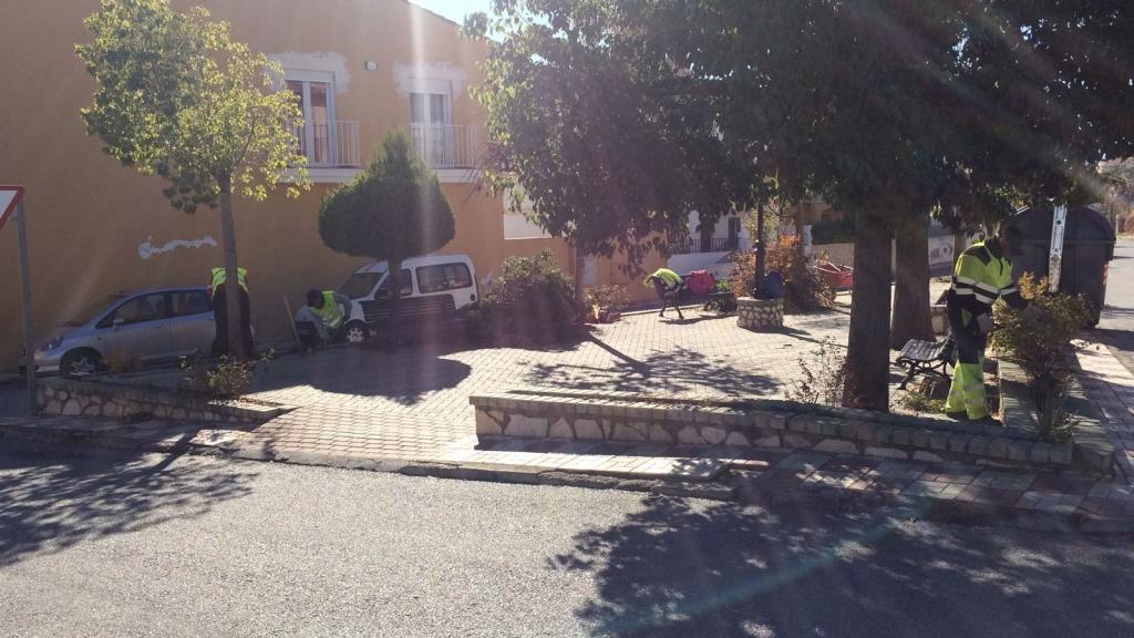 Arreglo Plaza 8 de marzo